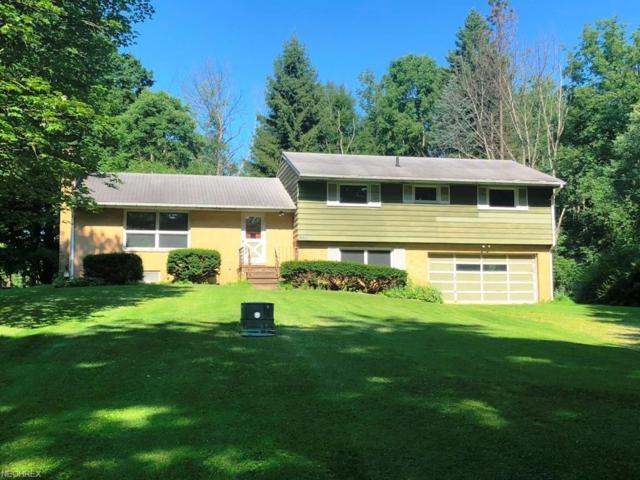 7936 S Gannett Rd, Sagamore Hills, OH 44067 (MLS #4014119) :: The Crockett Team, Howard Hanna