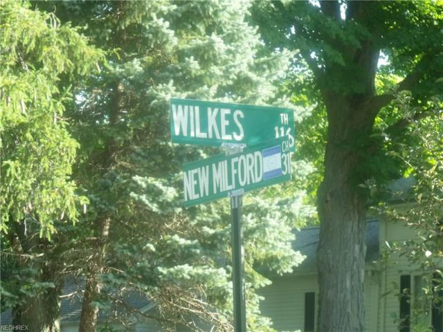 New Milford, Atwater, OH 44201 (MLS #4015682) :: The Crockett Team, Howard Hanna
