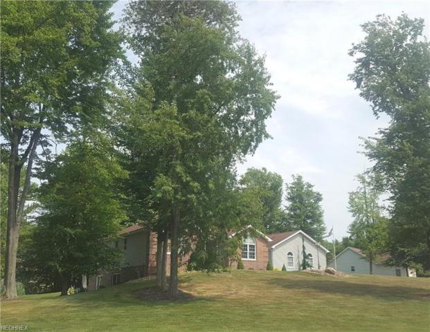 7424 Kingsboro Dr, North Kingsville, OH 44068 (MLS #4016089) :: The Crockett Team, Howard Hanna