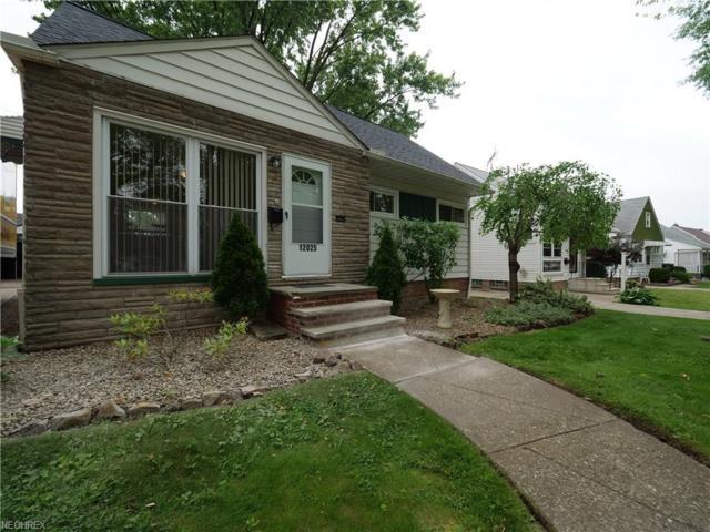 12025 Woodward Blvd, Garfield Heights, OH 44125 (MLS #4016468) :: The Crockett Team, Howard Hanna