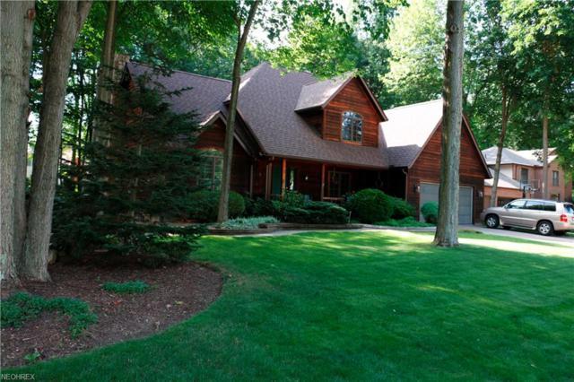 1414 River Trail Dr, Kent, OH 44240 (MLS #4018234) :: Keller Williams Chervenic Realty