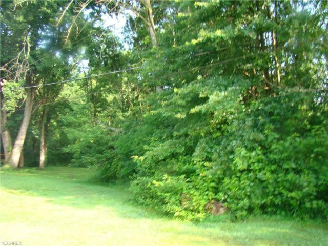 Lot 56 Main St, Windham, OH 44288 (MLS #4018238) :: Keller Williams Chervenic Realty
