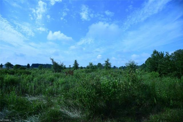 Tallmadge Rd, Rootstown, OH 44272 (MLS #4021548) :: RE/MAX Edge Realty