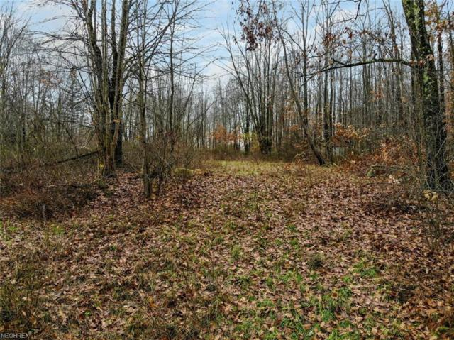 W Western Reserve Rd, Canfield, OH 44406 (MLS #4022137) :: The Crockett Team, Howard Hanna