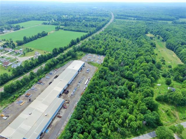 Windham-Rear, Newton Falls, OH 44444 (MLS #4024656) :: The Crockett Team, Howard Hanna