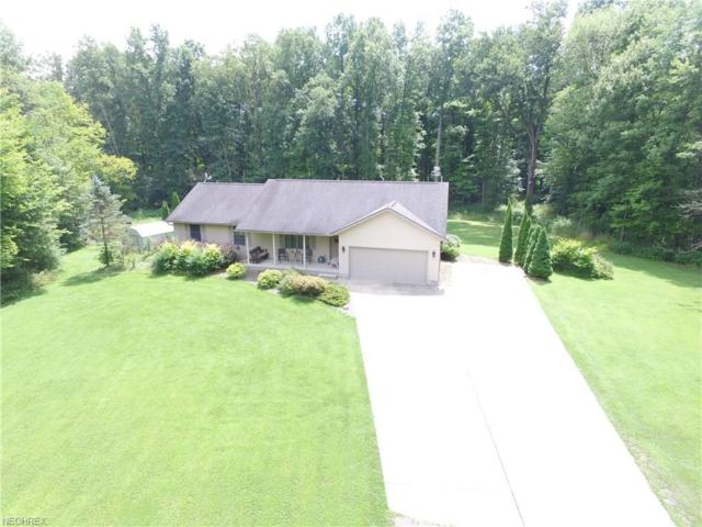 14635 Robinson Rd, Newton Falls, OH 44444 (MLS #4026054) :: RE/MAX Trends Realty