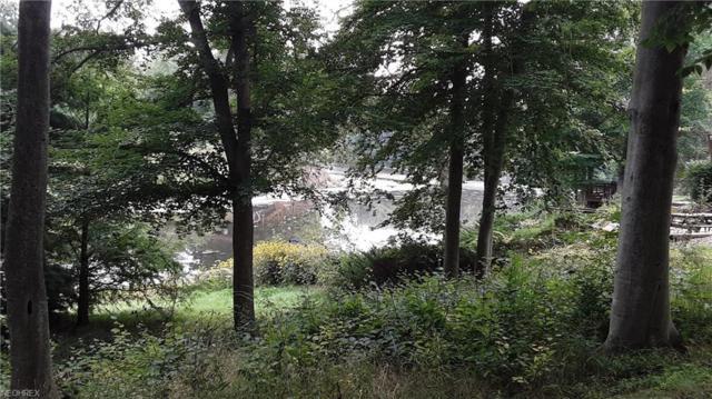 1419 Lake Vue Dr, Roaming Shores, OH 44085 (MLS #4030234) :: The Crockett Team, Howard Hanna