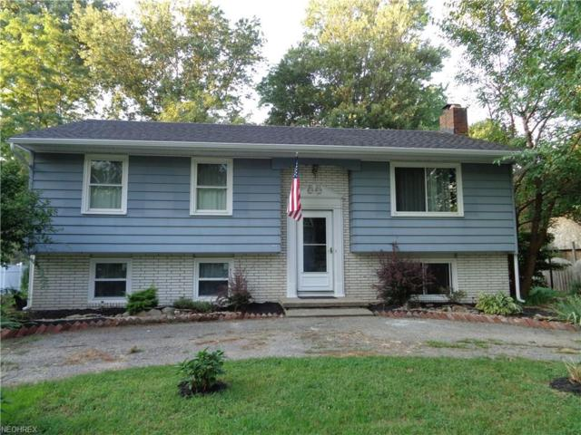 6321 Devon St, Madison, OH 44057 (MLS #4032024) :: The Crockett Team, Howard Hanna