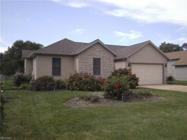 462 Mill Pond, Sandusky, OH 44870 (MLS #4032676) :: RE/MAX Trends Realty