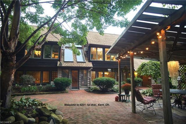 6221 1st Ave, Kent, OH 44240 (MLS #4033482) :: Keller Williams Chervenic Realty