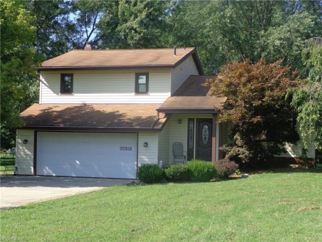 35916 Neff Rd, Grafton, OH 44044 (MLS #4034715) :: RE/MAX Edge Realty