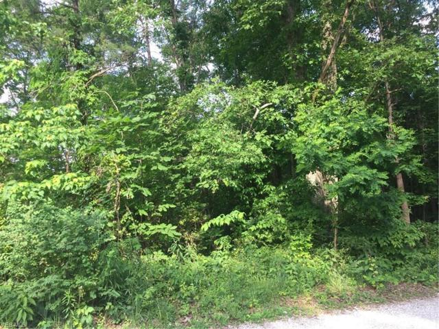 D 6 & 7 Pine Tree Road, Parkersburg, WV 26101 (MLS #4035444) :: The Holly Ritchie Team