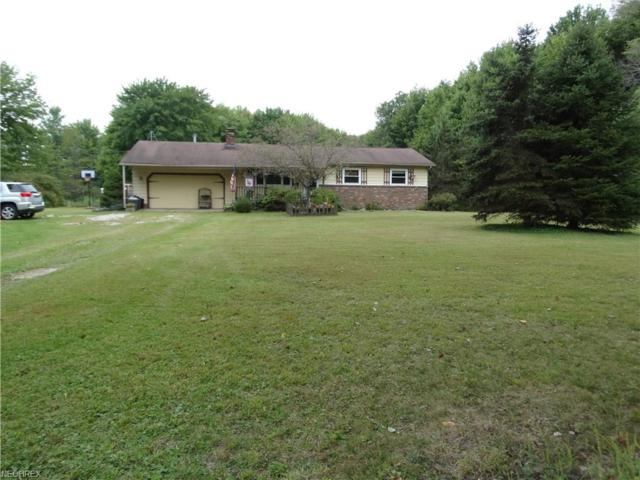 2133 E Union Rd, Jefferson, OH 44047 (MLS #4035760) :: RE/MAX Valley Real Estate
