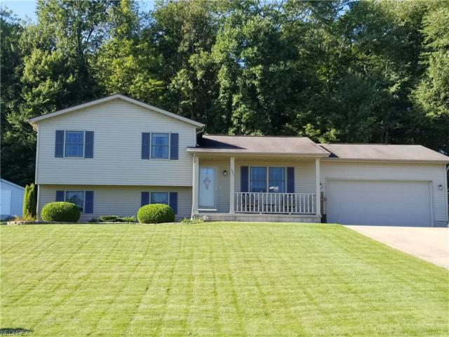 507 Old Coach Ln, Salem, OH 44460 (MLS #4037471) :: RE/MAX Edge Realty