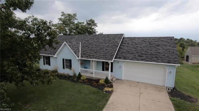 4145 S Ridge Rd, Perry, OH 44081 (MLS #4038993) :: Keller Williams Chervenic Realty