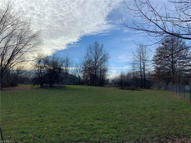 111 Mishler Rd N, Hartville, OH 44632 (MLS #4039969) :: RE/MAX Trends Realty