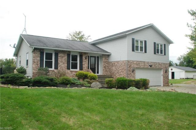 8507 S Elyria Rd, Shreve, OH 44676 (MLS #4041110) :: The Crockett Team, Howard Hanna