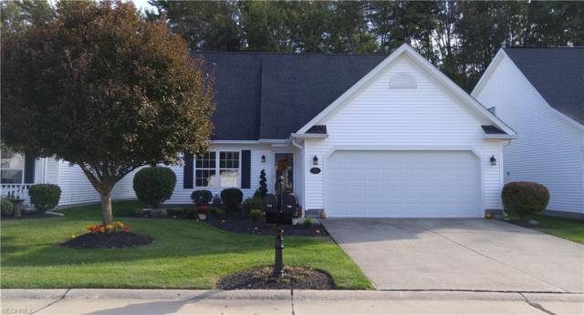 726 Coralberry Ln, Madison, OH 44057 (MLS #4042044) :: RE/MAX Trends Realty