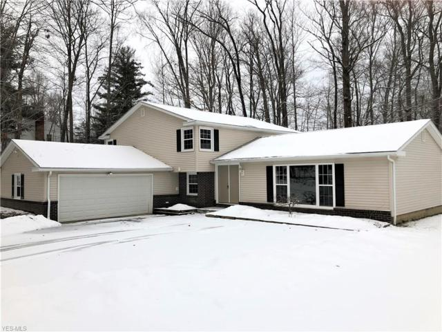 12917 Vincent Dr, Chesterland, OH 44026 (MLS #4042620) :: RE/MAX Edge Realty