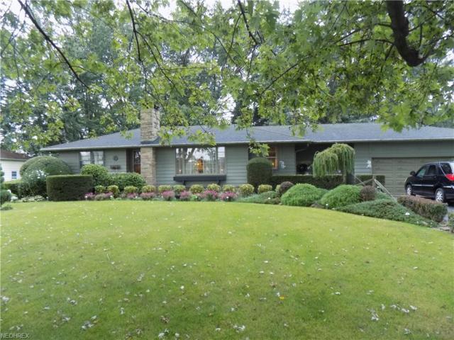 8248 West Ridge Rd, Elyria, OH 44035 (MLS #4042926) :: PERNUS & DRENIK Team