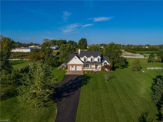 6514 Beach Rd, Wadsworth, OH 44281 (MLS #4042946) :: RE/MAX Edge Realty