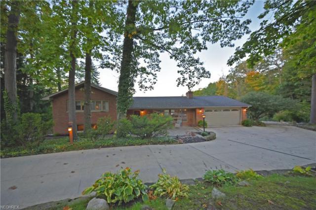 262 River Rd, Hinckley, OH 44233 (MLS #4044352) :: PERNUS & DRENIK Team