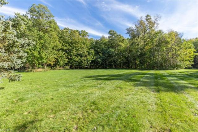 V/L Kelsey Ct, Kirtland, OH 44094 (MLS #4045102) :: RE/MAX Valley Real Estate