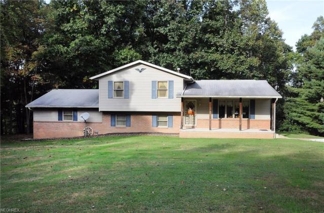 73359 Plum Rd, Kimbolton, OH 43749 (MLS #4045663) :: The Crockett Team, Howard Hanna