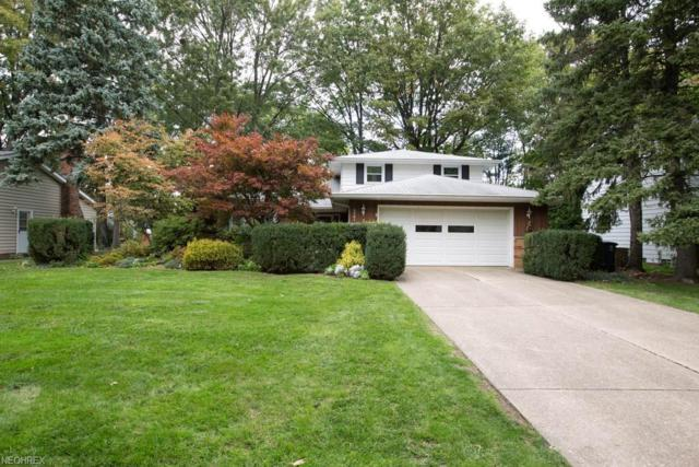 5261 Graham Dr, Lyndhurst, OH 44124 (MLS #4047271) :: RE/MAX Trends Realty