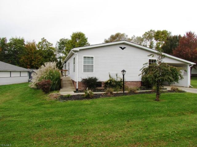 224 Troy Oaks Dr, Hiram, OH 44234 (MLS #4048954) :: RE/MAX Edge Realty