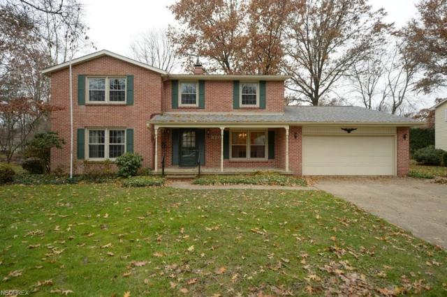 370 Dohner Dr, Wadsworth, OH 44281 (MLS #4053355) :: The Crockett Team, Howard Hanna