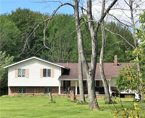 9331 Stanley Rd, Garrettsville, OH 44231 (MLS #4055816) :: RE/MAX Trends Realty