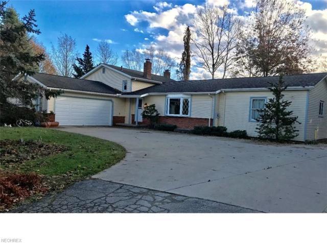 1136 Remsen Rd, Medina, OH 44256 (MLS #4056383) :: The Crockett Team, Howard Hanna