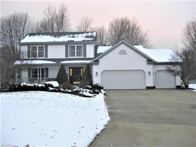 3246 Katie Ct, Perry, OH 44081 (MLS #4057969) :: RE/MAX Edge Realty