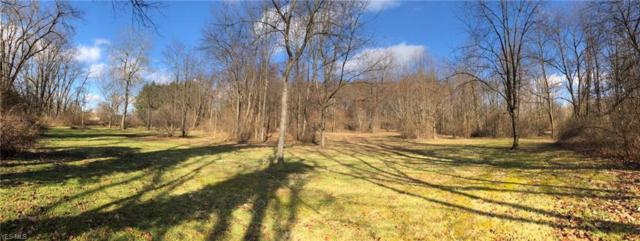 Longs Church Rd, East Liverpool, OH 43920 (MLS #4060536) :: RE/MAX Edge Realty
