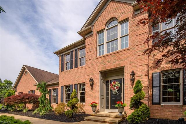 4775 Armandale Ave NW, Canton, OH 44718 (MLS #4060774) :: RE/MAX Edge Realty