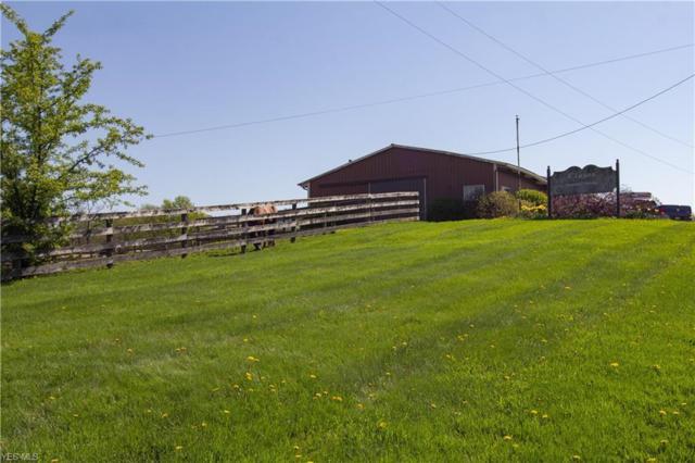 6259 Ryan Rd, Medina, OH 44256 (MLS #4061271) :: RE/MAX Valley Real Estate