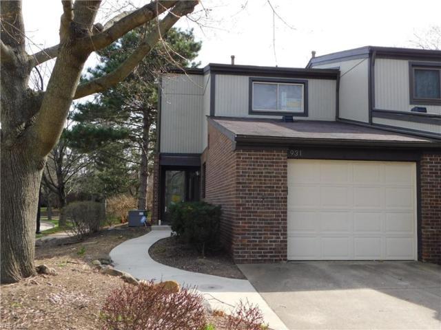 931 Trimble Dr, Akron, OH 44307 (MLS #4065511) :: Ciano-Hendricks Realty Group