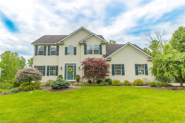 266 Ruby Lane, Streetsboro, OH 44241 (MLS #4067649) :: RE/MAX Valley Real Estate
