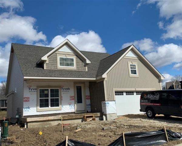 3129 Woodlark Trl, Medina, OH 44256 (MLS #4069378) :: RE/MAX Edge Realty