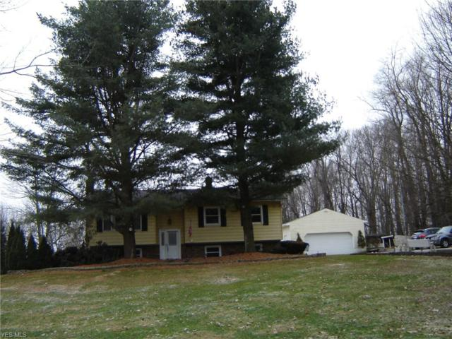 11141 Taylor May Rd, Chagrin Falls, OH 44023 (MLS #4069954) :: RE/MAX Valley Real Estate