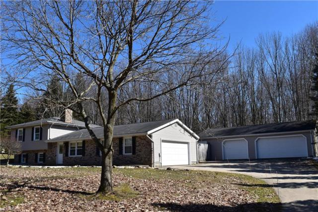11575 Lower Chelsea Dr, Chardon, OH 44024 (MLS #4074972) :: RE/MAX Trends Realty