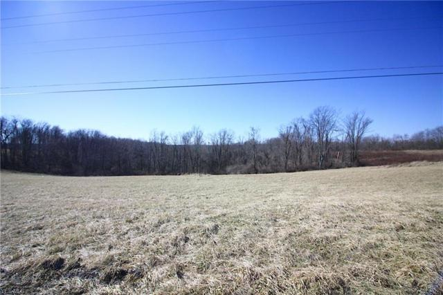 County Road 60, Bergholz, OH 43908 (MLS #4076178) :: RE/MAX Edge Realty