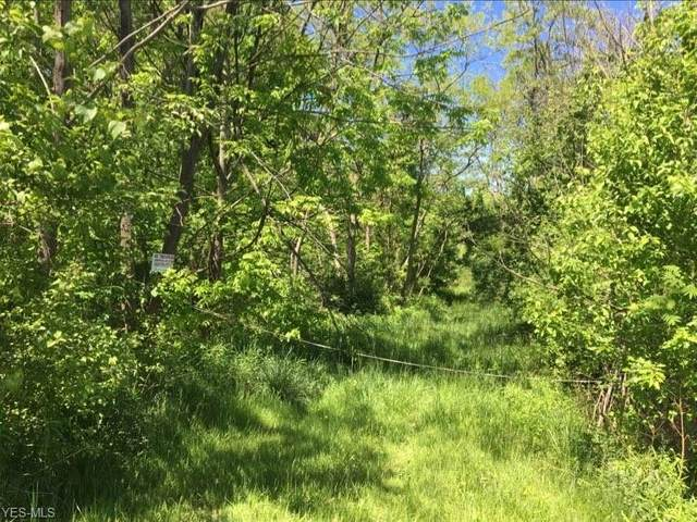 Bishop Road, Geneva, OH 44041 (MLS #4076195) :: Keller Williams Chervenic Realty