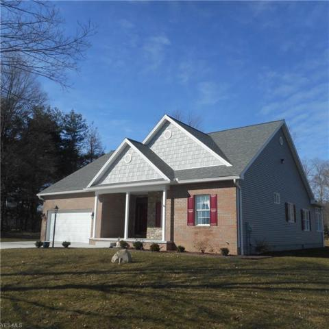 9678 Stratton Road, Salem, OH 44460 (MLS #4076203) :: RE/MAX Edge Realty