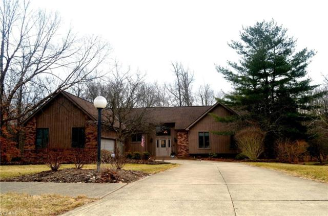 6640 Westview Dr, Brecksville, OH 44141 (MLS #4076933) :: Ciano-Hendricks Realty Group