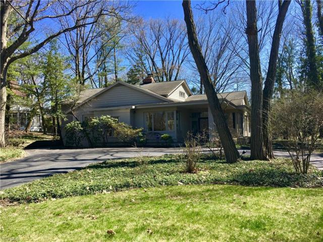 17280 S Park Blvd, Shaker Heights, OH 44120 (MLS #4077489) :: RE/MAX Edge Realty