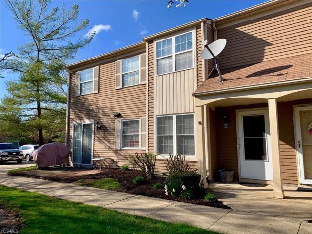 87 Privet Ln, Northfield, OH 44067 (MLS #4079127) :: Ciano-Hendricks Realty Group