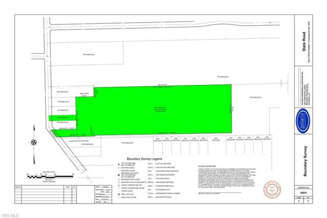 State Rd, North Royalton, OH 44133 (MLS #4081950) :: Ciano-Hendricks Realty Group