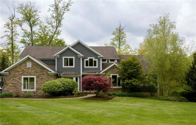 17452 Deepview Drive, Chagrin Falls, OH 44023 (MLS #4082553) :: The Crockett Team, Howard Hanna